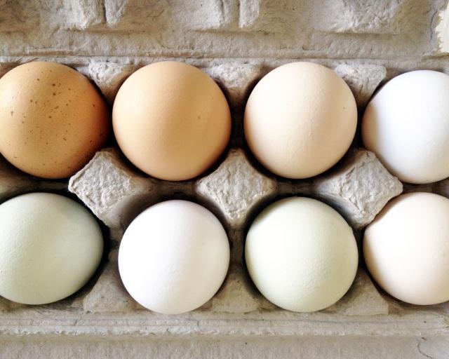 Eggs for incredible hair